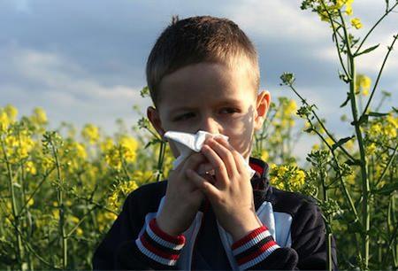 حساسیتهای بچه ها در فصل بهار