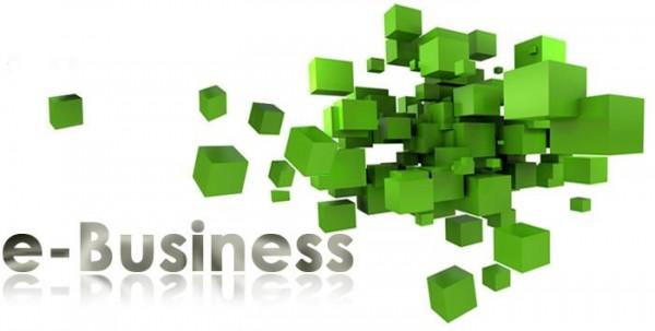 ebusiness کسب ثروت و درآمد اینترنتی محال است؟