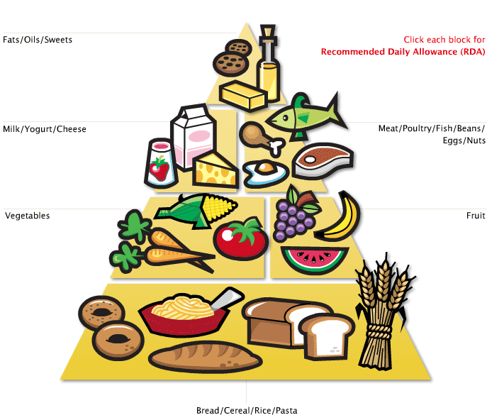 هرم راهنمای غذایی وانتخاب غذای روزانه