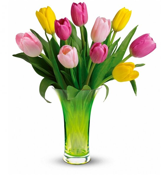 گلدانهای مناسب خانه