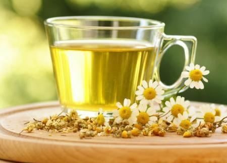 فوايد و نحوه دم كردن چاي سبز