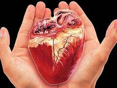 انجام پیوند قلب در بیمارستان شهید چمران اصفهان