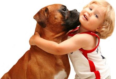 جلوگیری از انتقال بیماری ها از حیوانات