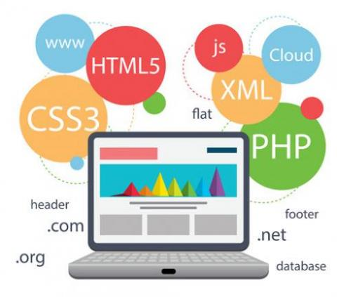 سرویس طراحی سایت